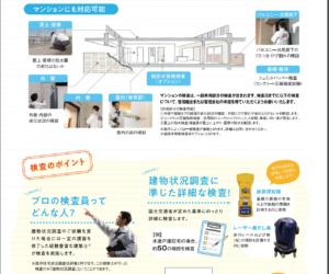 inspection japan